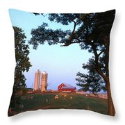 Dairy Farm Throw Pillow by Photo Researchers