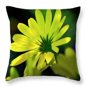 Daisy A Different Look Throw Pillow