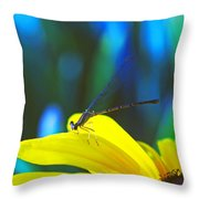 Daisy And Dragonfly Throw Pillow