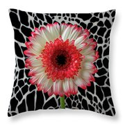 Daisy And Graphic Vase Throw Pillow