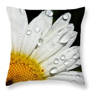 Daisy Drops Throw Pillow