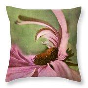 Daisy Fun - A01v04b2t05 Throw Pillow