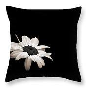 Daisy In The Dark Throw Pillow