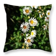 Daisy Production Line Throw Pillow