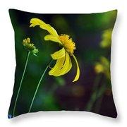 Daisy Profile Throw Pillow