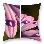 Daisy Rain  Throw Pillow