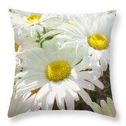 Daisy Summer Garden Throw Pillow