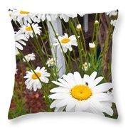 Daisy Visitor Throw Pillow