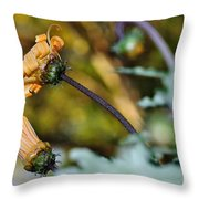 Daisy With Curls Throw Pillow