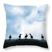 Dam Ducks Throw Pillow