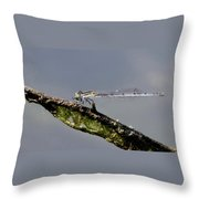Damsel With Lunch Throw Pillow