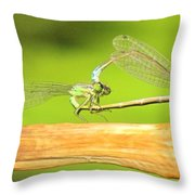 Damselflies Throw Pillow