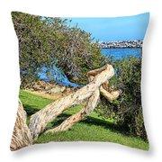 Dana Point Harbor Channel Throw Pillow