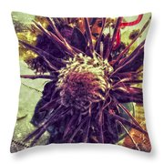 Dances Of Sun  Throw Pillow