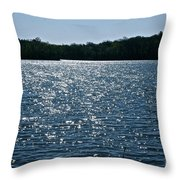 Dancing Diamonds Throw Pillow