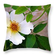Dancing Flora Throw Pillow by Andee Design