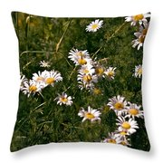 Dancing In The Field Throw Pillow