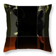 Dancing Mirrors Throw Pillow