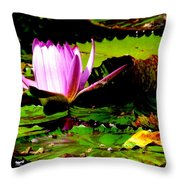 Dancing Pink Water Lilly Throw Pillow
