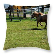 Dancing Pony Throw Pillow