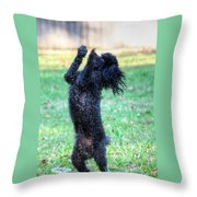 Dancing Poodle Throw Pillow