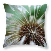 Dandelion Tears Throw Pillow by Paul Ward