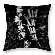Dandelion Wreath Throw Pillow