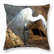 Dandruff Throw Pillow