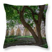 Danish King's Garden  Tallinn Throw Pillow