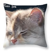 Daphne Cat Miss You Throw Pillow