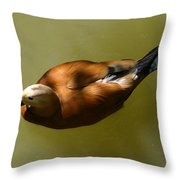 Dappled Duck Throw Pillow