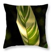Dappled Ginger Leaf Throw Pillow