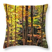 Dappled Sun On Fall Colors Throw Pillow