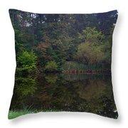 Dark Lake 1 Throw Pillow