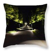 Dark Pathway Throw Pillow