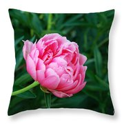 Dark Pink Peony Flower Series 2 Throw Pillow