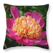Dark Pink Peony Flower Series 3 Throw Pillow