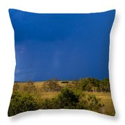 Dark Storm Over The Everglades Throw Pillow