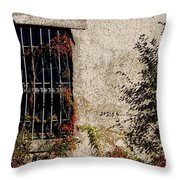 Darkness Beyond The Walls Throw Pillow