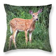 Darling Fawn Throw Pillow