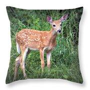 Darling Fawn Throw Pillow