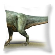 Daspletosaurus Torosus, A Prehistoric Throw Pillow