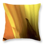 Datura Transparency  Throw Pillow