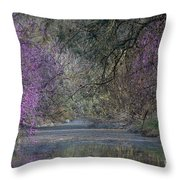 Davis Arboretum Creek Throw Pillow by Diego Re