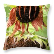 Dawdling Days Throw Pillow