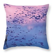 Dawn Sky Reflected In Pool Throw Pillow