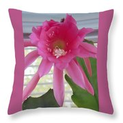 Day Blooming Cactus Throw Pillow