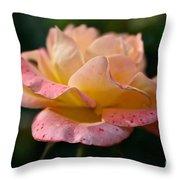 Day Breaker Floribunda Throw Pillow