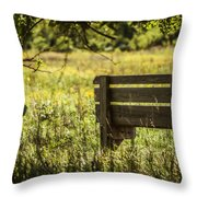 Day Dreaming Of Summer Throw Pillow