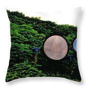 Day Lights Throw Pillow